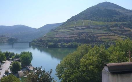 Hoe wordt Port gemaakt - de Dourovallei