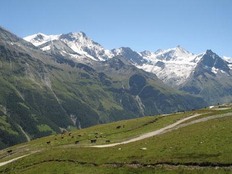 Panorama dagli alpeggi si Zinal