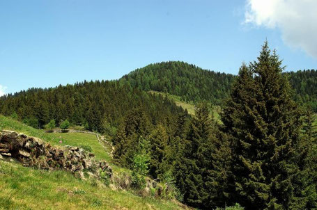 Il Monte Baitridana