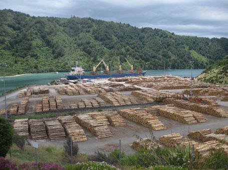 Holz im Hafen von Picton, New Zealand, Dez. 2013