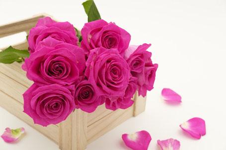 Rosen Valentinstag kaufen in Würzburg