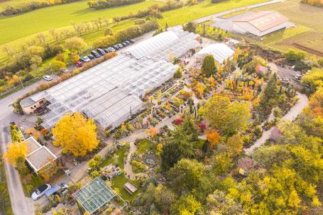 Gärtnerei und Gartenbaumschule in Würzburg und Umgebung
