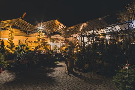 Adventsausstellung, Weihnachtsmarkt und Adventsmarkt 2020 in Höchberg bei Würzburg - Infos und Öffnungszeiten