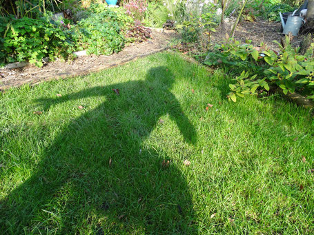 De Magische Tuin : De magische tuin inrichting huis