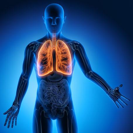 Atmung Quell Unserer Lebensenergie Praxis Fur Arztliche