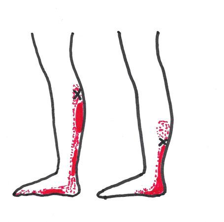 Praxis für ärztliche Osteopathie