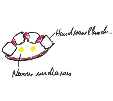 Praxis für ärztliche Osteopatie Dirk Gahlenbeck , hamburg