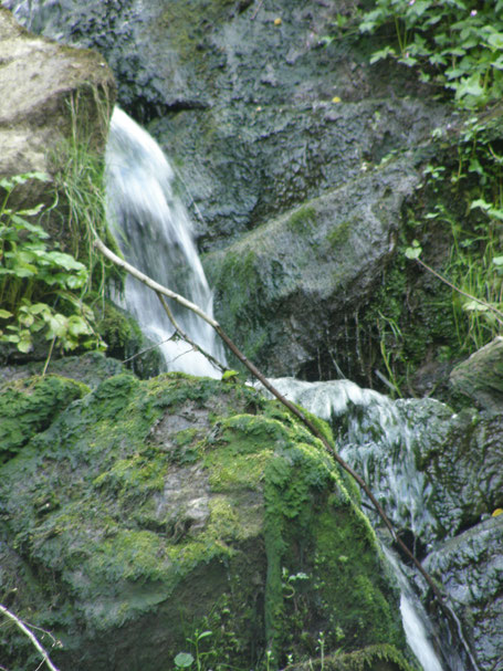 Freier Fluß von Körperflüssigkeit durch ärztliche Osteopathie