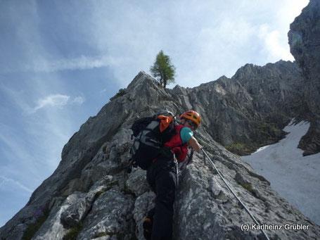 Klettersteig Ehrwald : Tajakante für heuer wieder geöffnet bergprofi ehrwald zugspitze