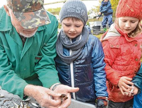 Den kleinen Fischexperten Lukas und Leonie zeigt Jochen Schröder (links) einen Krebs.
