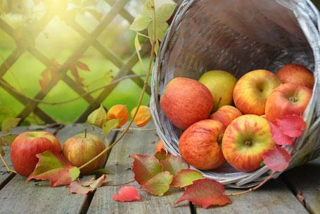 Herbst; TCM; Trockener Husten; Tipps