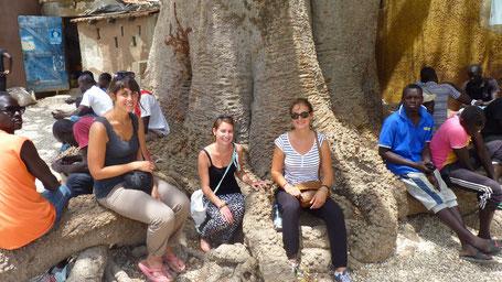 Ile aux coquillages Sénégal