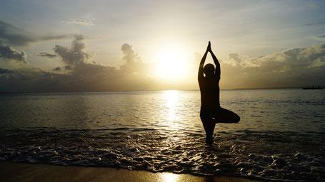 Didier Cuoq professeur de yoga