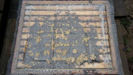 Bienenvolk im Winter - Blick unter die Folie bei 9°C