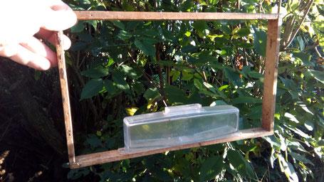 Ameisensäurebehandlung; Burmeisterverdunster; Varroabekämpfung; Imkerei