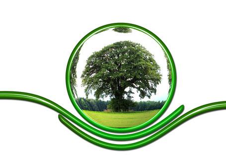 Le télésecrétariat (secrétaire à domicile, télésecrétaire) et la protection de la planète.