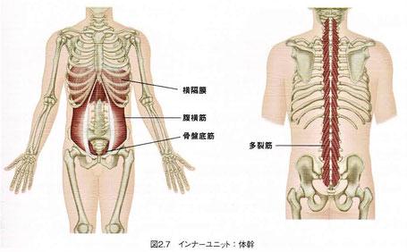 インナーユニット:体幹