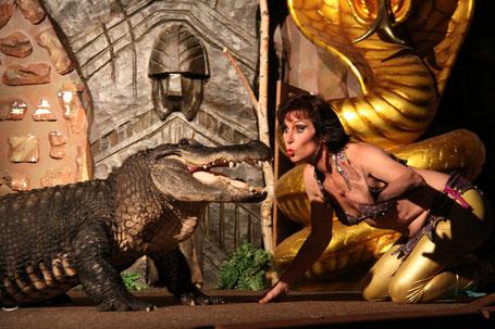 Krokodile bei der Fakirshow
