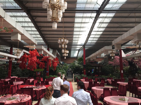 View of the restaurant for lunch