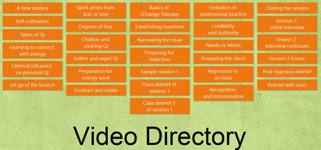 Screenshot of the Video Directory