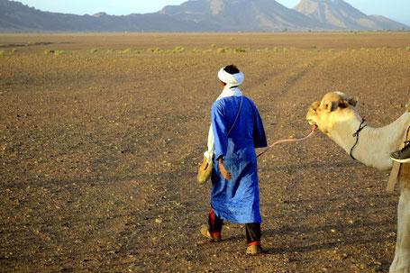 Die Karawane kehrt aus der Wüste zurück