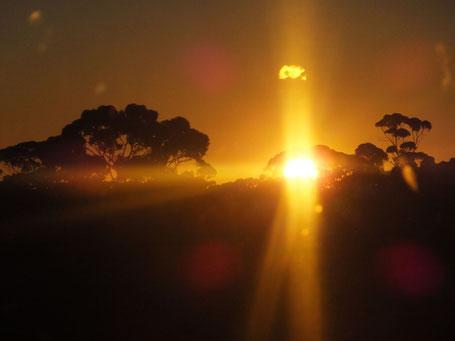 Sonnenuntergang durchs Panorama-Zugfenster