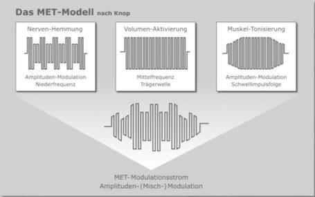 MET-Ströme wirken homogen im gesamten durchströmten Gewebsvolumen und erfassen alle erregbaren Strukturen