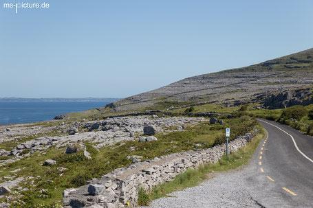 Kalksteinküste des Burren