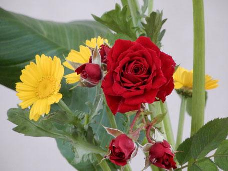 2019年5月19日・講壇献花 君枝さんによります 何と黄色のお花は「春菊」だそうです(^^♪