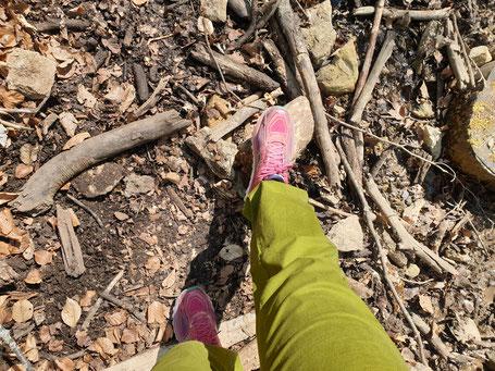 Auf dem Bild sind die Beine von Sandra Lehner zu sehen. Sie trägt eine grüne Hose und pinke Turnschuhe. Sie geht über Waldboden.