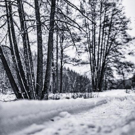 Schneelandschaft in der Oberpfalz