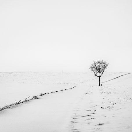 Stille im Schnee