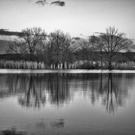 Am Neuhauser Wasserschloss