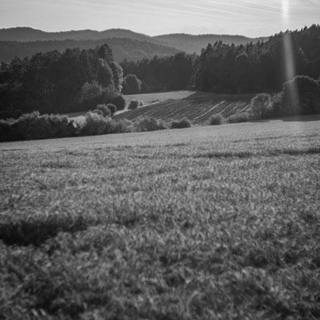 Lanschaft in der Fränkischen Schweiz