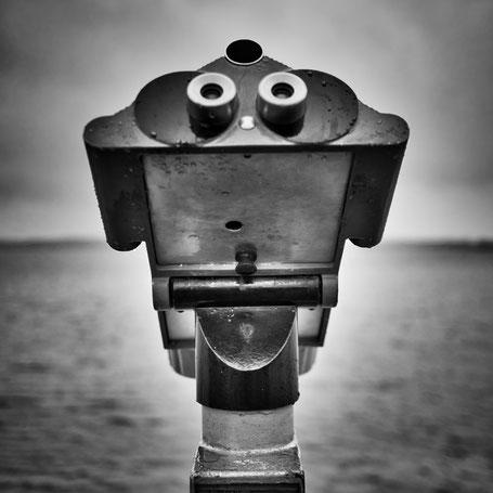Alien an der Eckernförder Bucht gesichtet