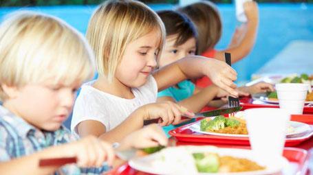 ▷ Curso de Monitor de Comedor Escolar - Cursos Online