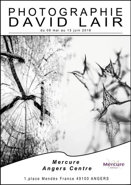 Exposition de david Lair à l'hôtel Mercure Angers centre