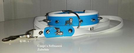 Biothane Hundehalsband Set, Leine Hunde, Hundeleine, Nietenhalsband, Hundehalsband mit Spikes, Hundehalsband mit Nieten, Hundehalsband Namen,