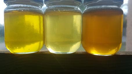 miel de lavande fine, miel de lavandin et miel de Provence