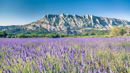 Photographie d'Art de Provence