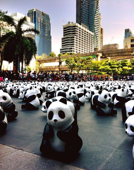Panda Flashmob - Central World - Bangkok
