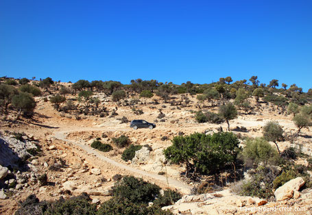 Martsalo Parkplatz, Martsalo Schlucht, Mires Schluchten, Kreta Schluchten, Kreta wandern, Palmen auf Kreta