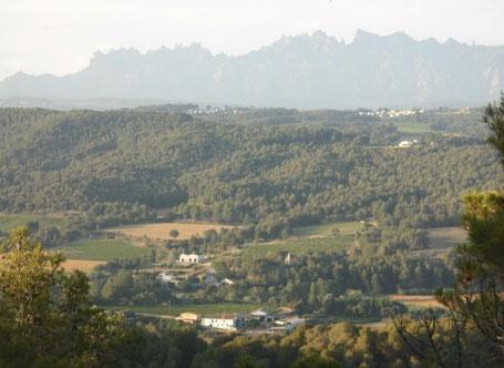 Bild: Finca Can Gallego im Penedes in der Nähe von Barcelona und Montserrat. Mas dels Clavers
