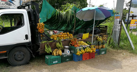 Fruit Truck offering typical Costa Rican`s fruits in Santa Cruz Costa RIca