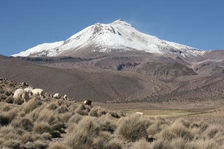 Trekking Touren in den Anden Boliviens