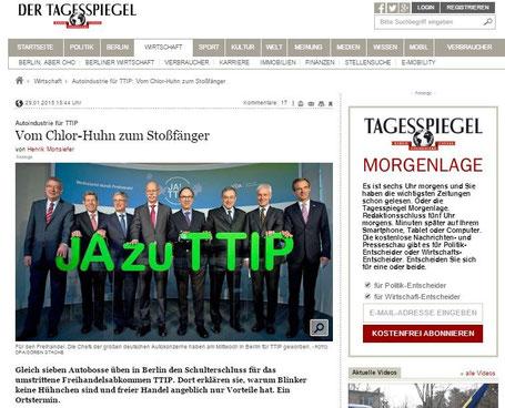 29.01.2015 - Der Tagesspiegel
