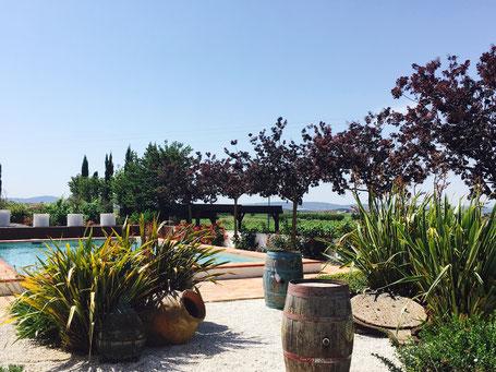Requena Valencia Spanien Weinprobe Stadtführung deutsch deutschsprachig Tour Bodega
