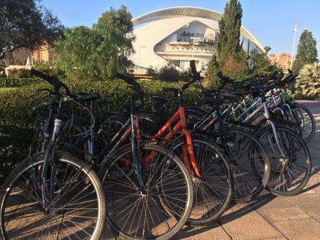 Fahrräder Palau Fahrradtour Bike
