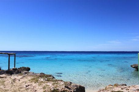 Buceo Bahía de Cochinos Cuba