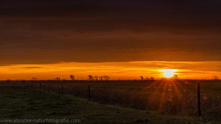 Sonnenaufgang über den Fischlandwiesen
